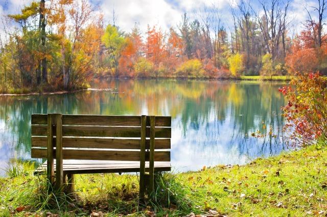 finter bench